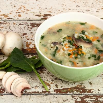 Biome Healing Soup